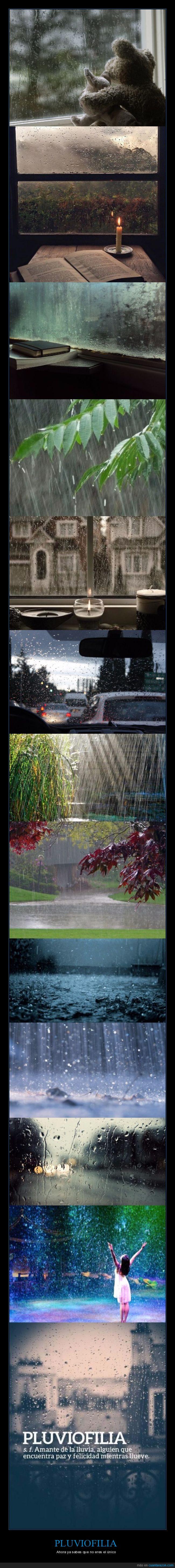 felicidad,lluvia,lluviofilia,placer,pluviofilia