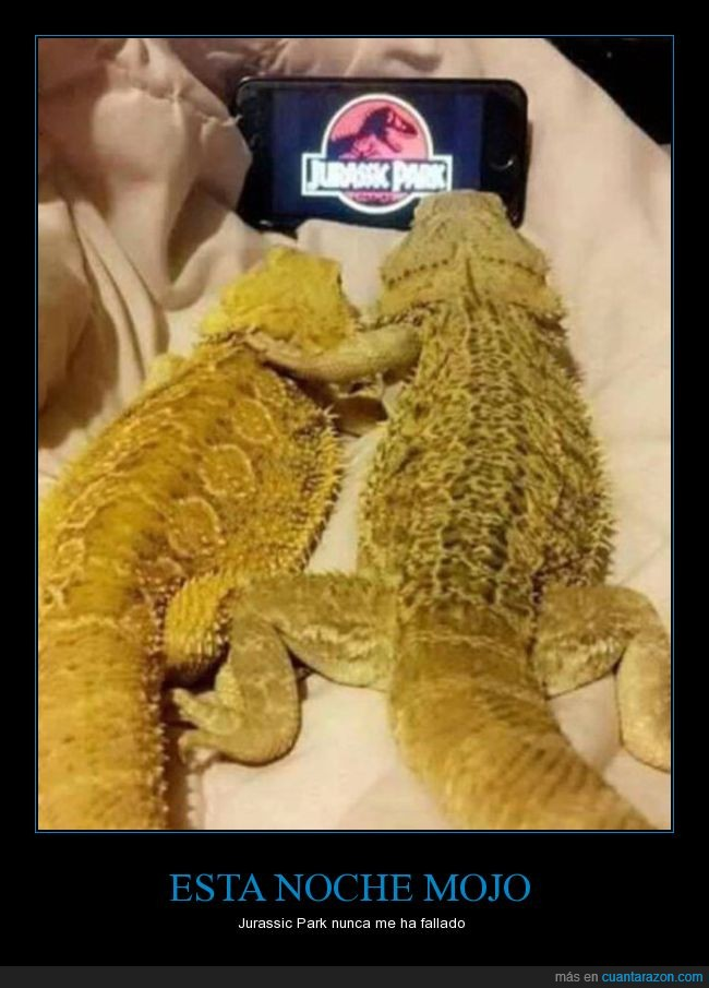 iguanas,jurassic park,película,reptiles