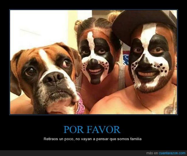 boxer,can,perro,pintura