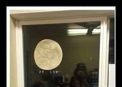 Enlace a La superluna sin salir a la calle