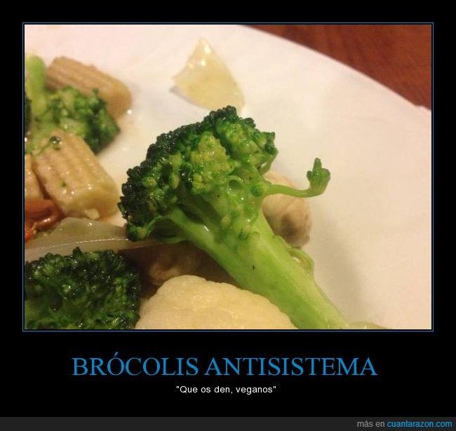 brocoli,peineta,sacando el