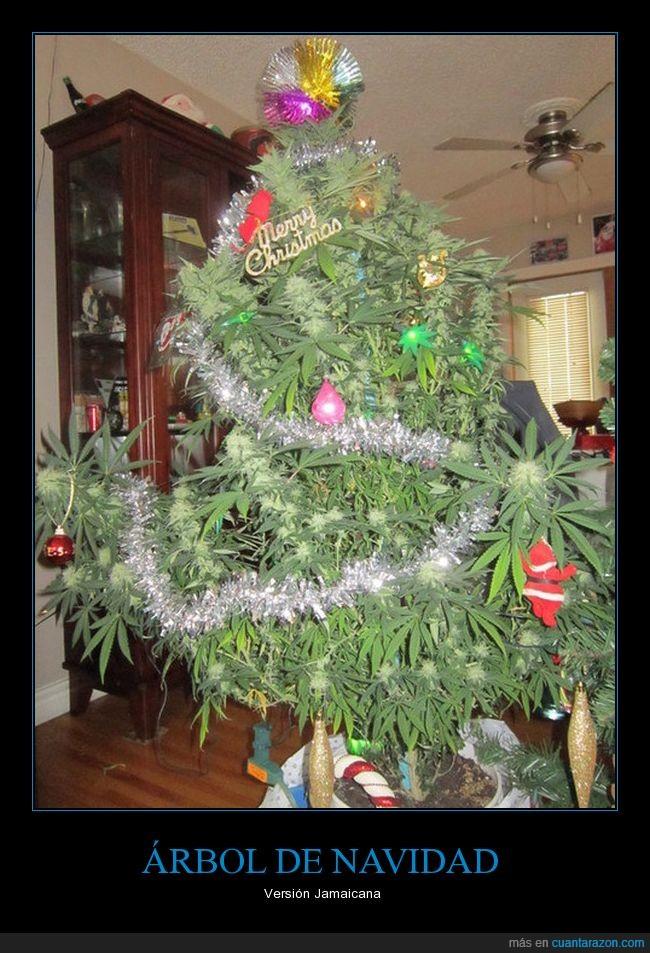 árbol de navidad,Jamaica,marihuana