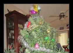 Enlace a La Navidad más divertida