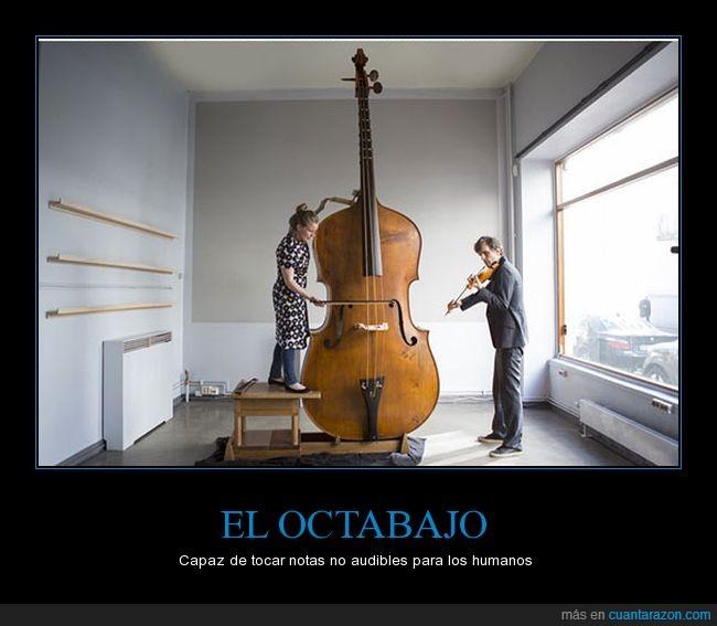 infrasonido,octabajo,oído