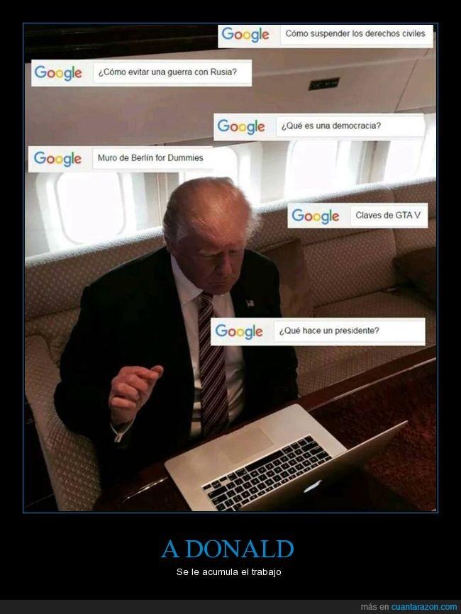 ayuda,donald trump,eeuu,google,preguntar,presidente,usa