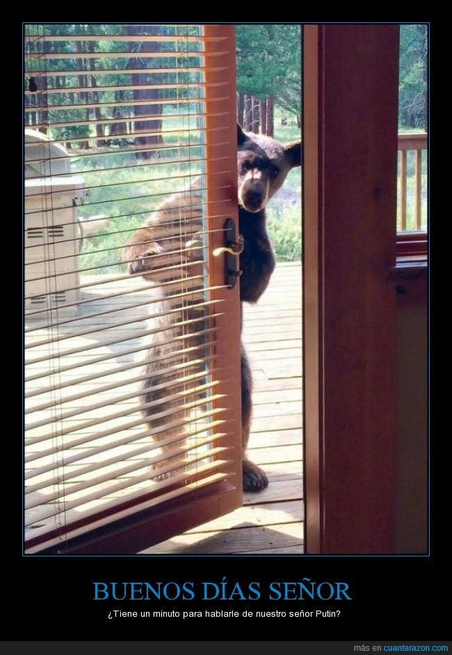 Oso,plantigrado,puerta