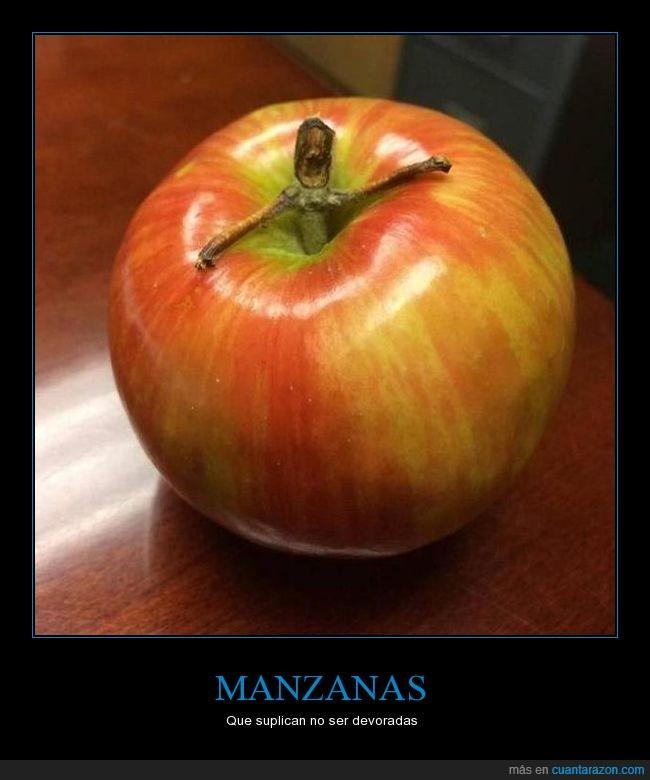 fruta,manzana,tallo