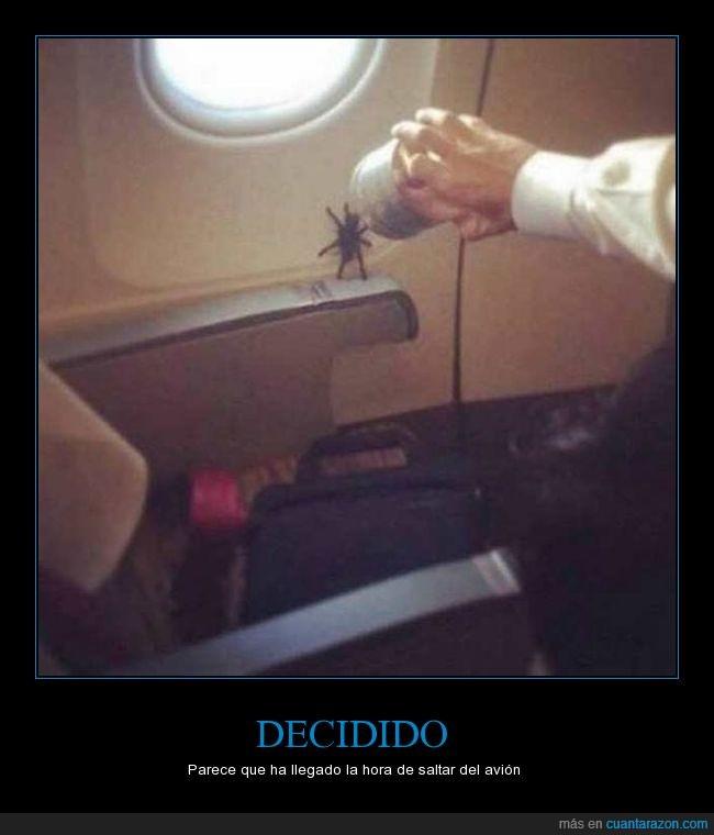 araña,avion,saltar,wow