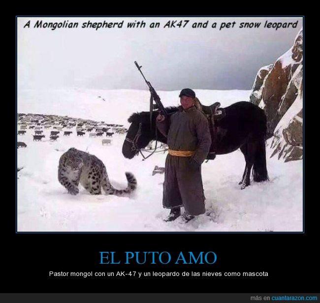 ak-47,arma,caballo,leopardo de las nieves,Mongol,nieve