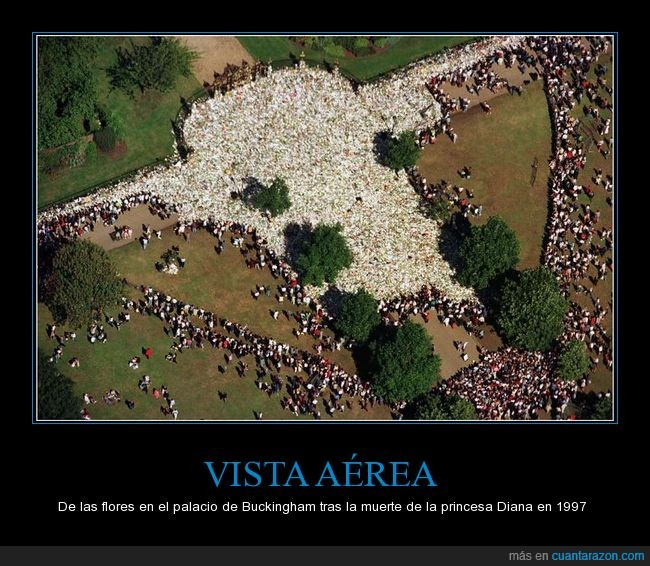 flores,Princesa Diana,vista aérea