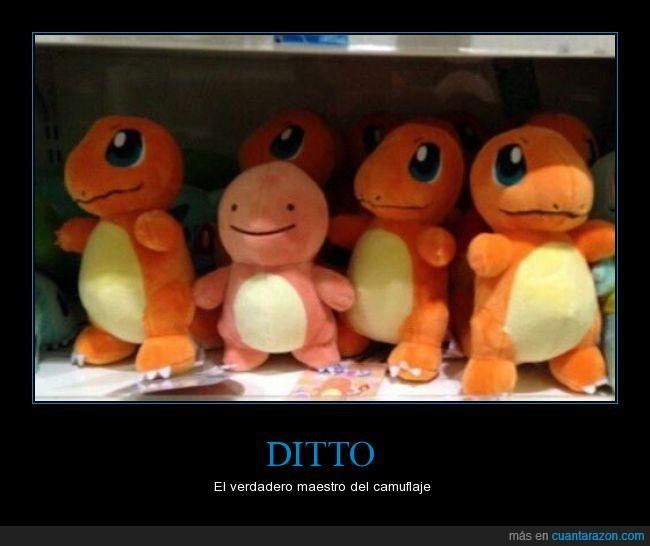 camuflaje,charmander,Ditto,escondido,naranja,Pokémon