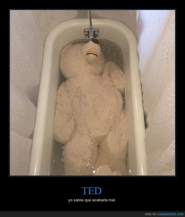 bañera,felpa,oso,peluche,Ted,tina