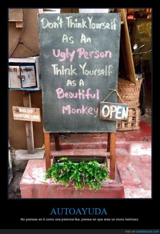 belleza,cartel,guapo,humor,reflexión,simios,texto