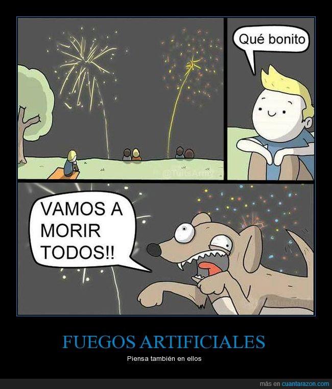fuegos artificiales,miedo,perro,terror