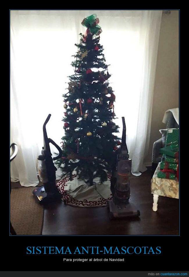 árbol,aspiradora,can,gato,perro,pino