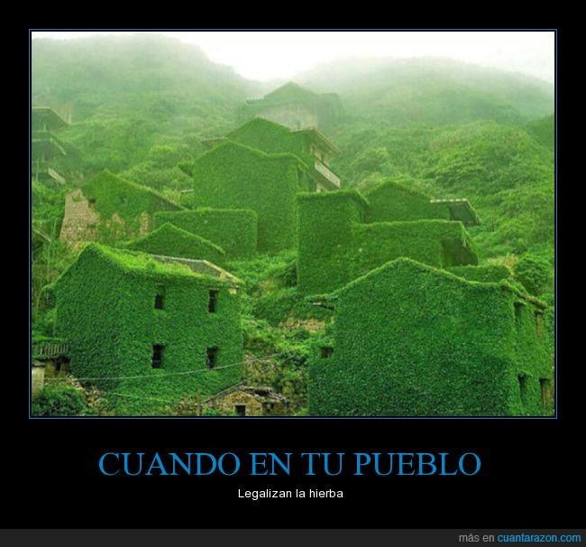 hierba,paredes,pueblo,verde