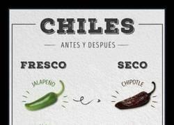 Enlace a MISMO CHILE