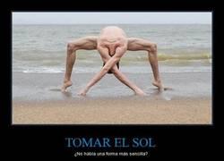 Enlace a TOMAR EL SOL
