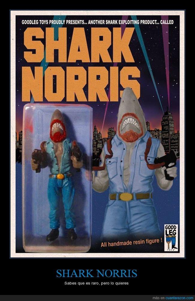 Chuck Norris,extraño,fusión,juguete,tiburón