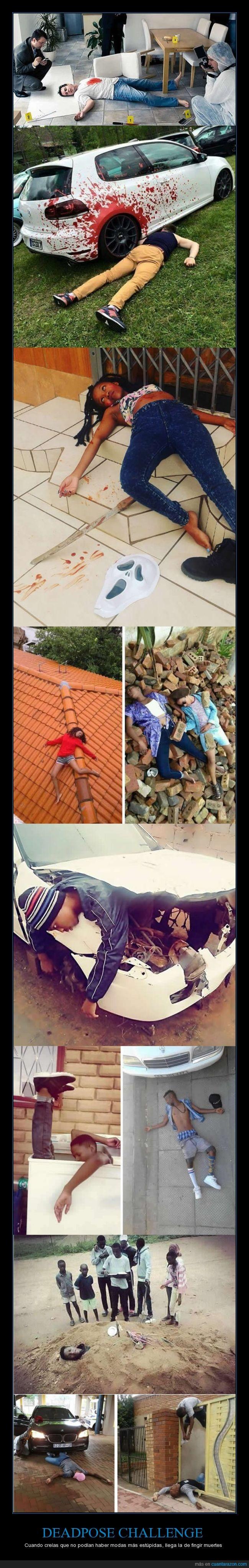 challenge,dead pose,moda,viral