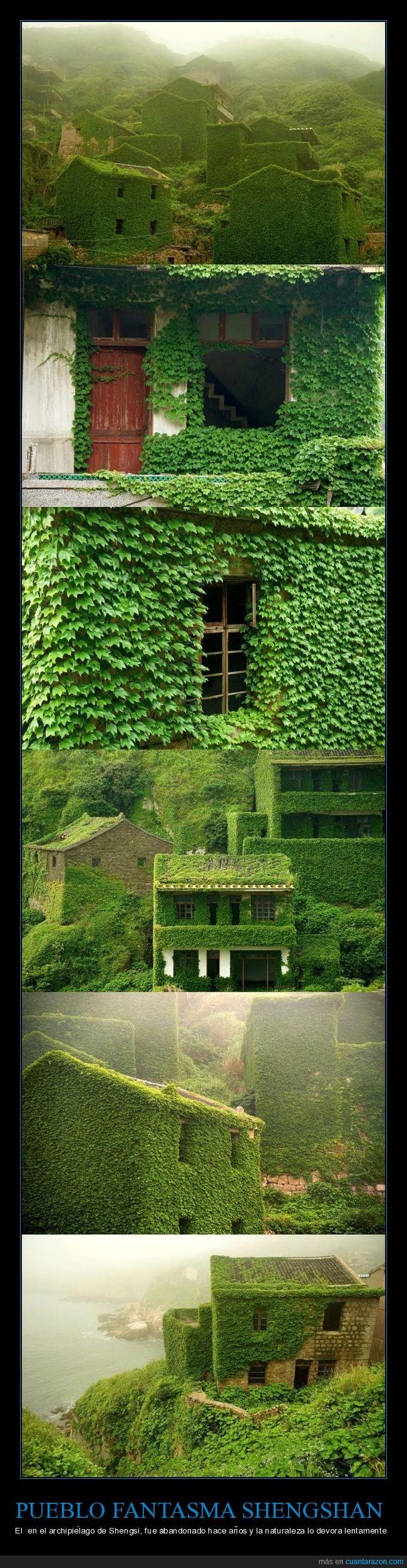 pueblo fantasma,shengshan,vegetación