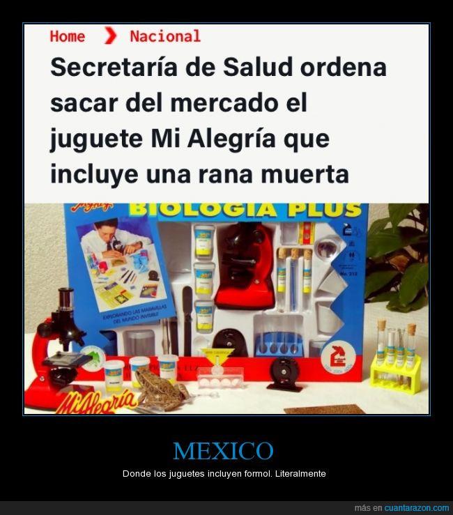 biología,formol,juguete,mexico,rana muerta