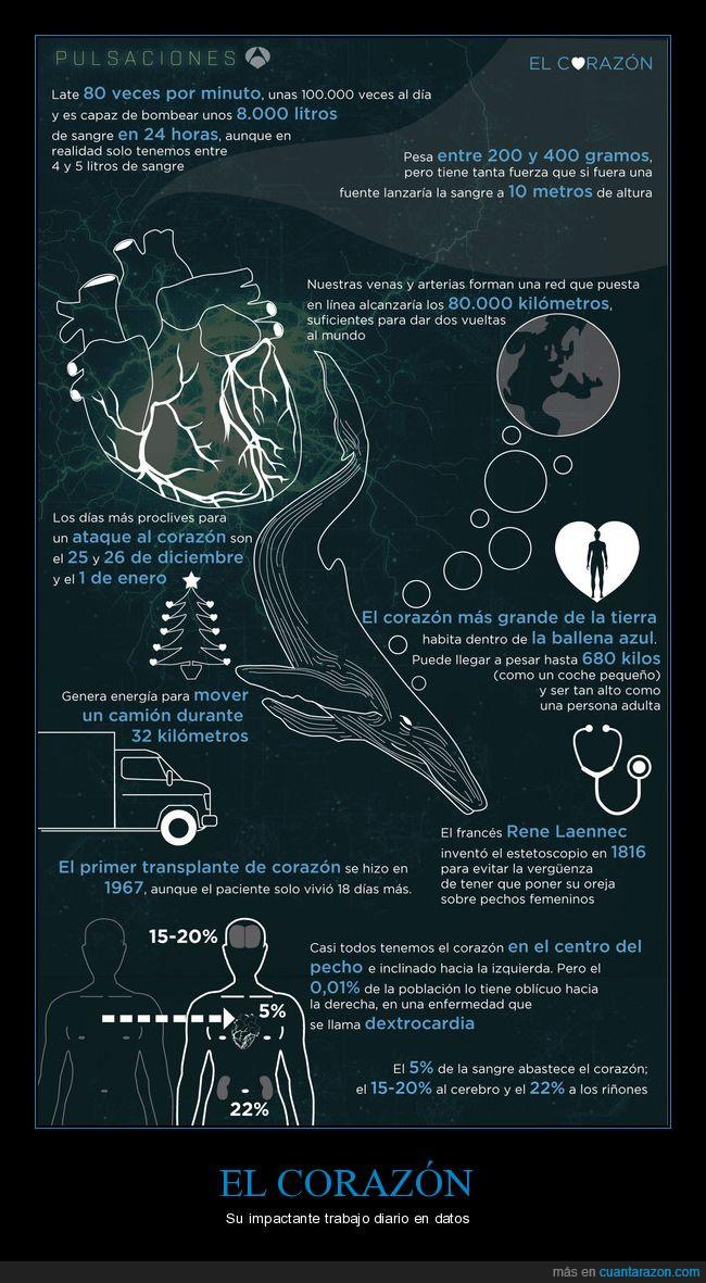 Corazón,datos,infografía