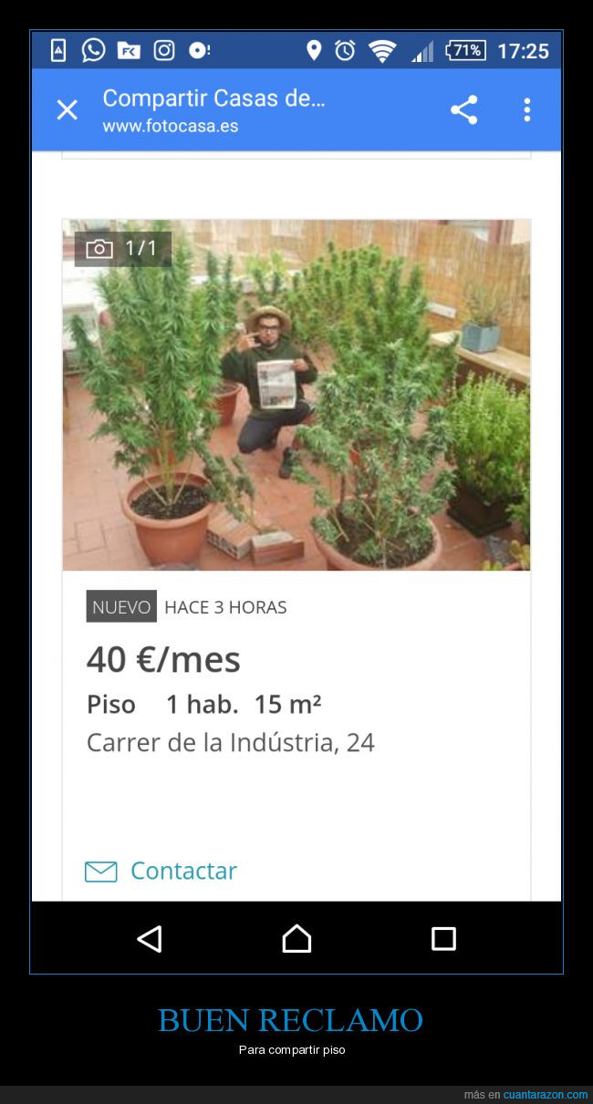 compartir,drogas,marihuana,Piso,weed