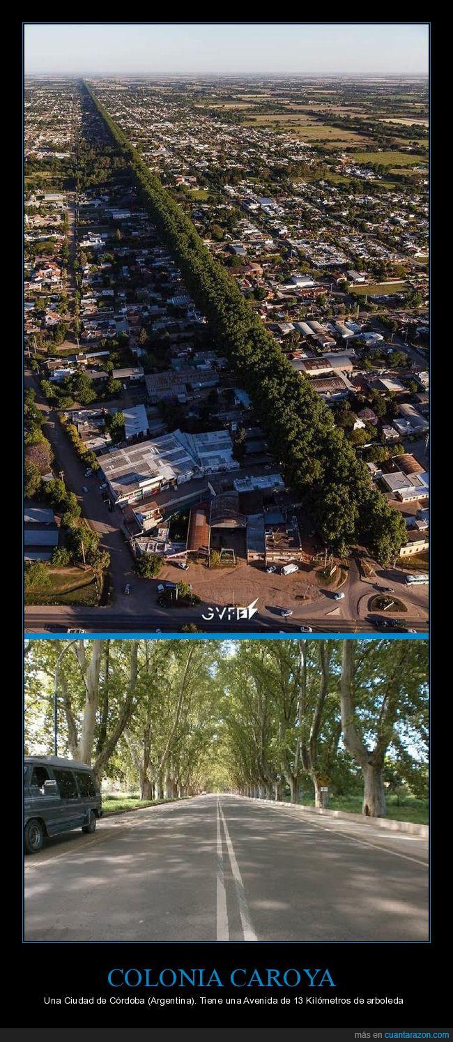 Arboleda,Argentina,Avenida,Colonia Caroya,Córdoba
