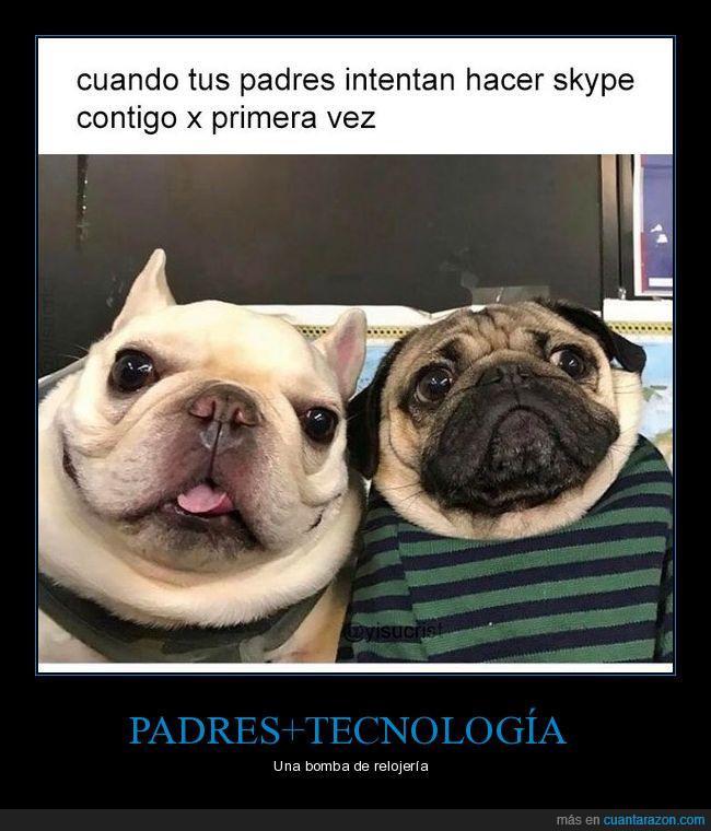 padres,pardillos,skype,videoconferencia