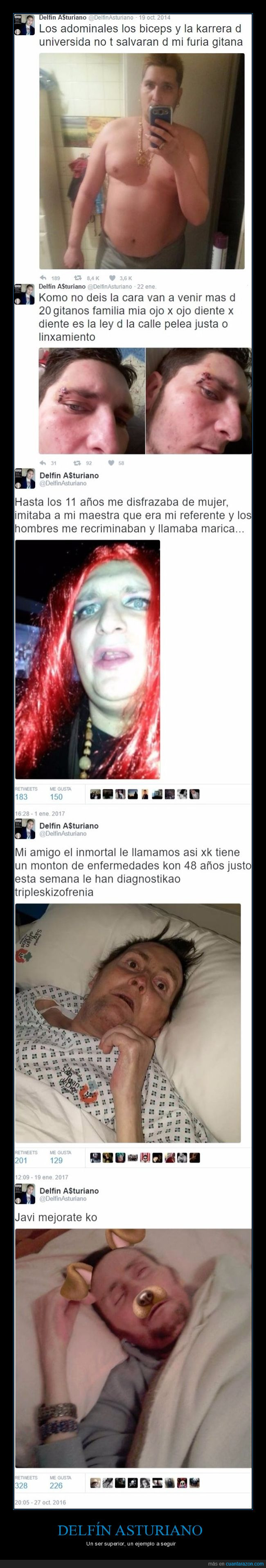 delfín asturiano,instagram,personaje,wtf