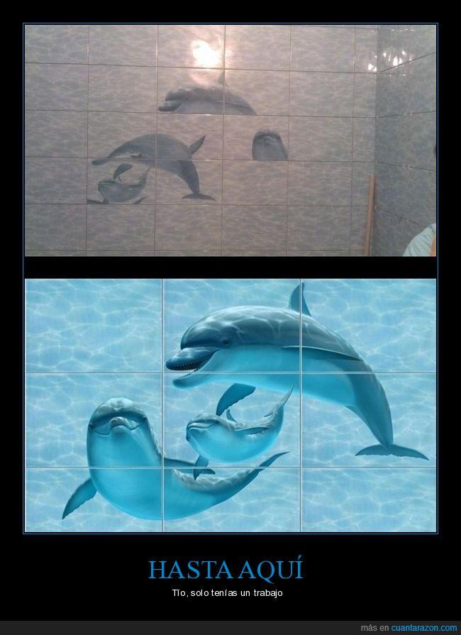 delfines,mosaico