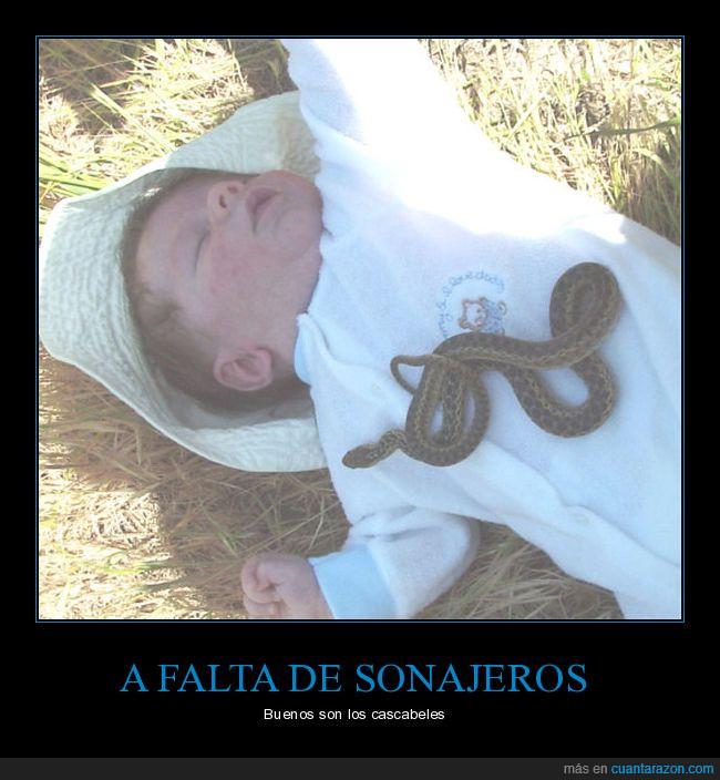 bebé,cascabel,serpiente,víbora