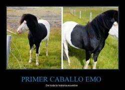 Enlace a PRIMER CABALLO EMO