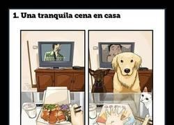 Enlace a Cómo es la vida antes y después de tener un perro en 8 cómics