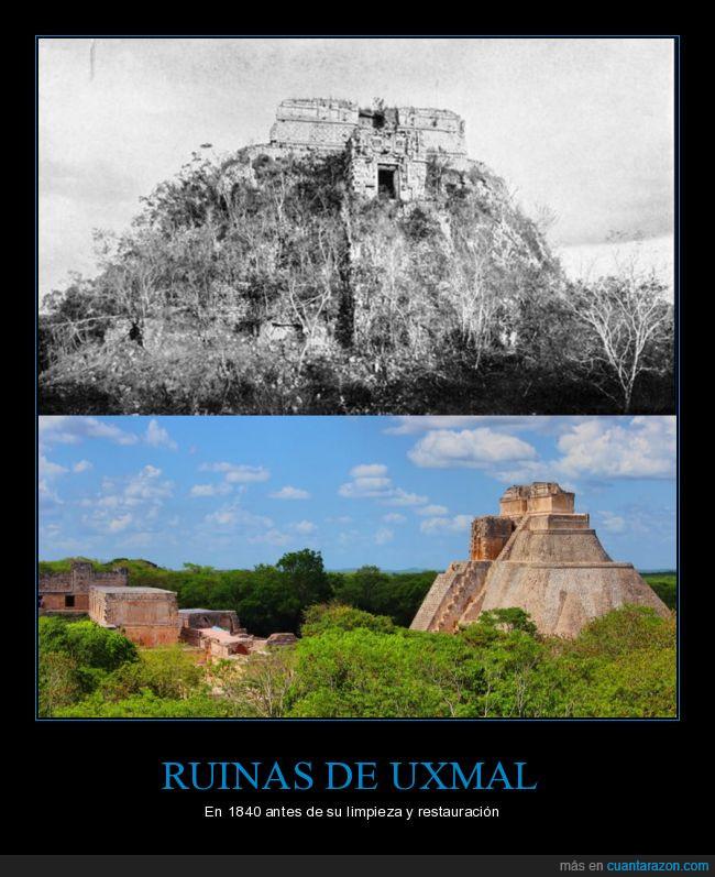 maleza,mexico,uxmal,viejo,yucatan
