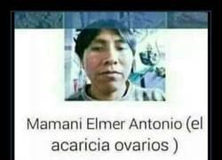 Enlace a La descripción en facebook de Mamani Elmer Antonio va a dejarte sin palabras