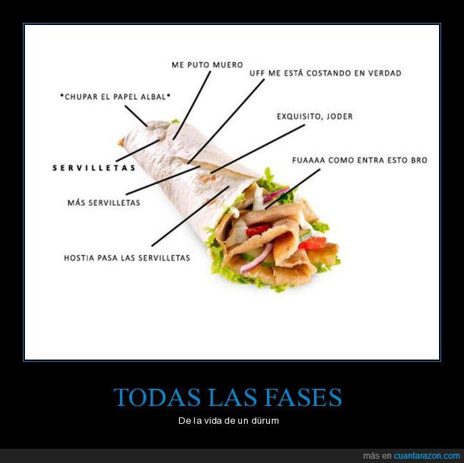 comida,durum,fases