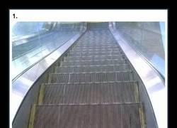 Enlace a Si no tenías paranoias con las escaleras mecánicas, tras ver estas imágenes, las tendrás