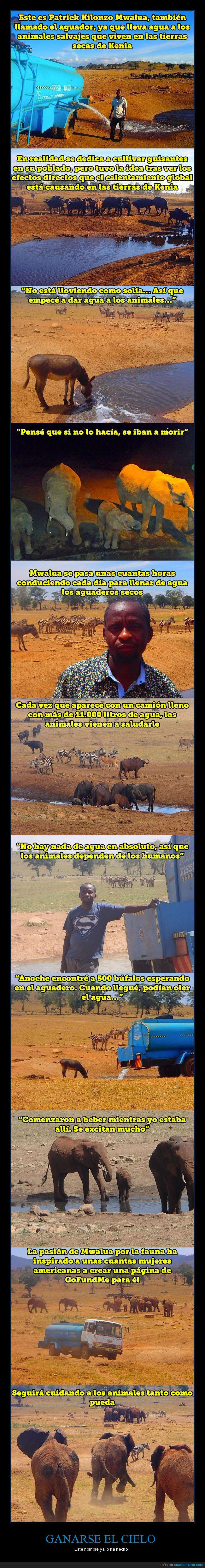 agua,animales,ayudar,sequía