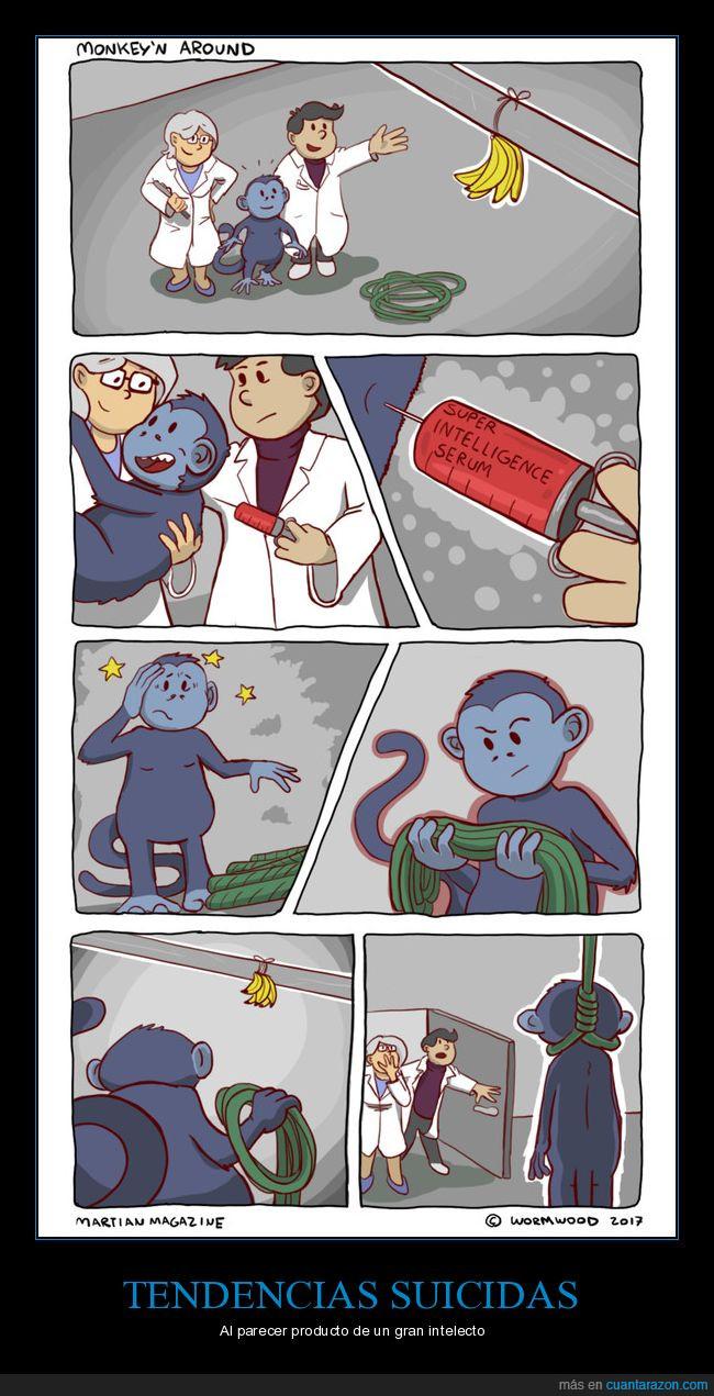 científicos,experimento,inteligencia,mono,suero,suicidio