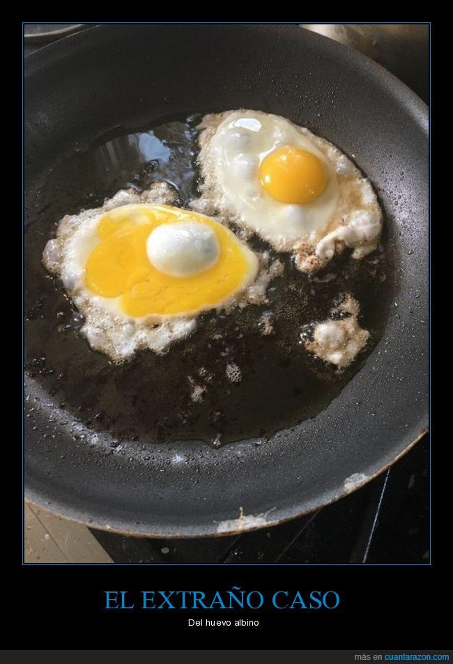fritos,huevo,sartén,yema