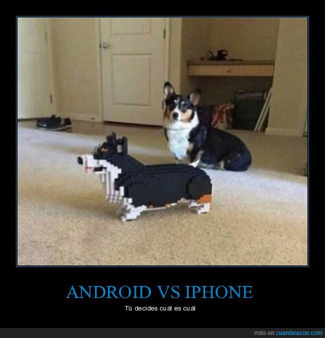 corgi,lego,perro
