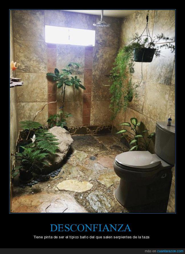 Baño,ducha,naturaleza,plantas,selva