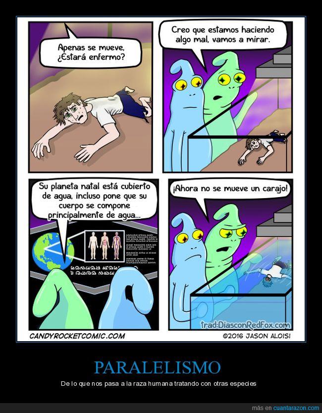 experimentos,extraterrestres,fail,humano,liarla