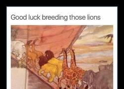 Enlace a El detalle en este cuento del Arca de Noé que ha hecho explotar la cabeza a todo el mundo