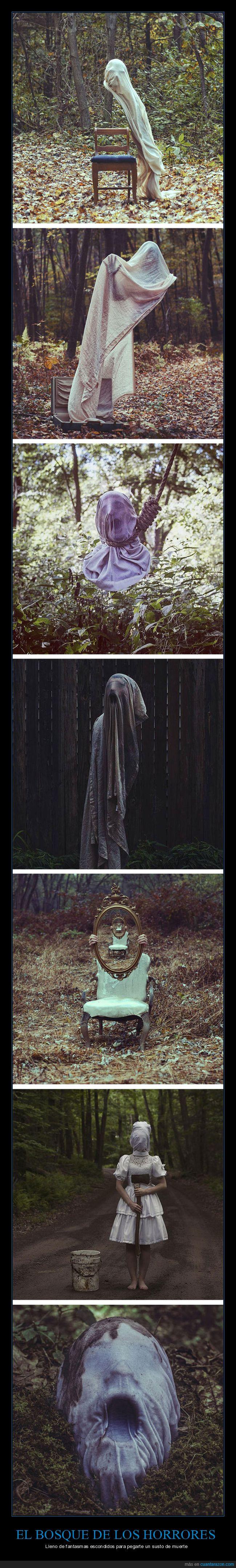 arte,bosque,fantasmas,miedo