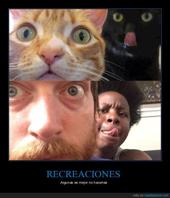 barba,gatos,humanos,lengua,ojos