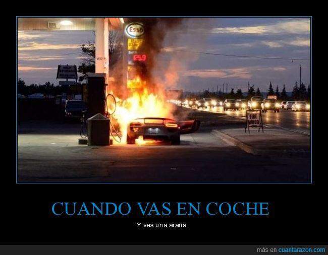 araña,coche,gasolinera,Porsche 918 Spyder