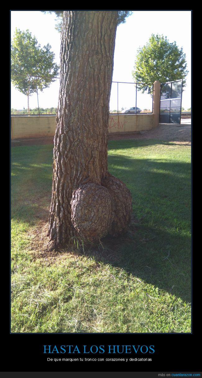 árbol,huevos,tronco